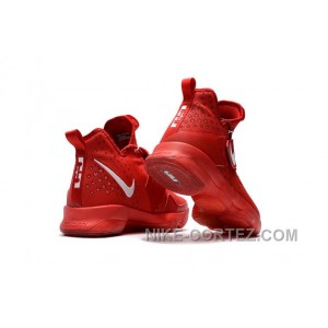 Nike LeBron 14 SBR Students' Red White Discount